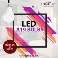 Get More Durable Lighting Solution By Buying A19 LED Light Bulbs