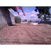 Vendo terreno plano en San Cristobal