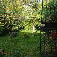 Vendo cas de un nivel en Tikal III