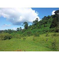 CityMax Antigua Excelente oportunida de terreno en Zona 16